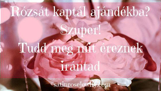 Rózsát kapni mindig nagyszerű dolog. Ha ismerjük a szimbolikus jelentését a rózsánknak akkor szavak nélkül is tudni fogjuk mit érez irántunk az ajándékozó.
