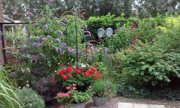 Vlinderstruik, buddleja, geranium, pellargonium, zinken teil. Carlasstijl.