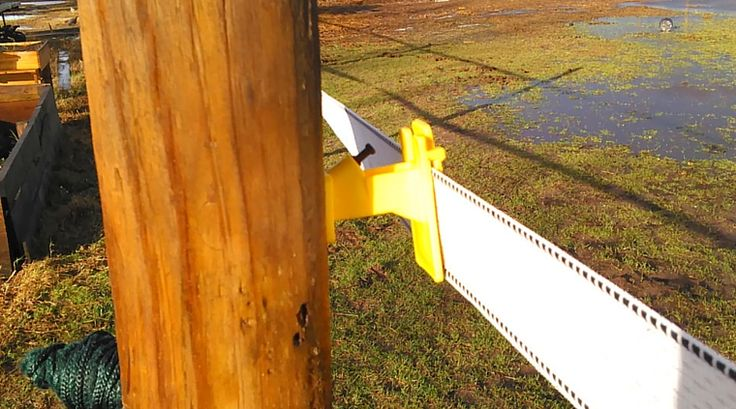 Before you build electric fencing for horses, read this guide to find out which fencing is best for you and how to install it!