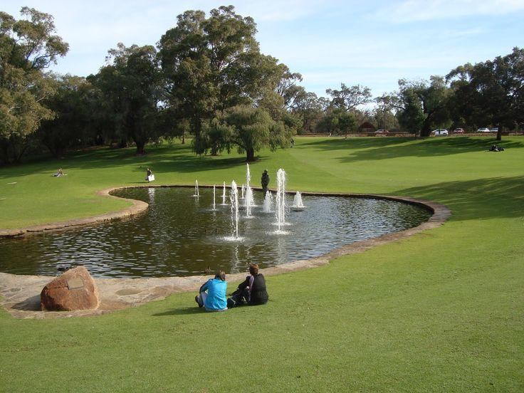 64 Best Kings Park Images On Pinterest Kings Park Western Australia And Perth Australia