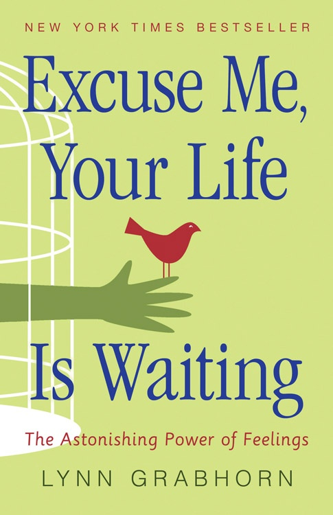 Excuse Me, Your Life is Waiting The Astonishing Power of Feelings by Lynn Grabhorn