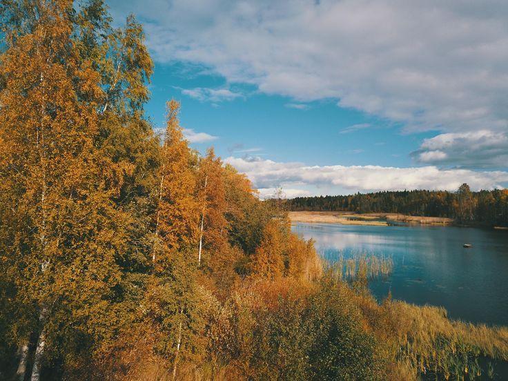 Autumn colors. Kalapää Finland [OC] [4000×3000] …