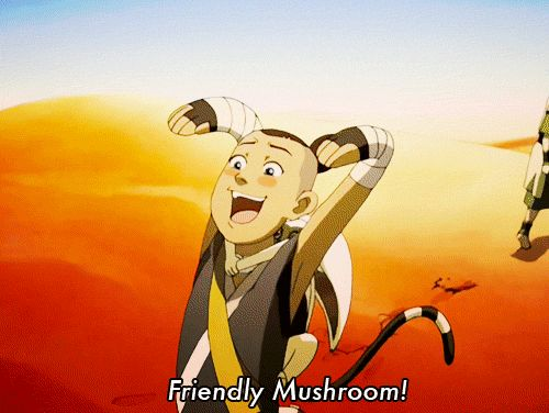 """best gif ever OMZ my little sister saw this for the first time and would not stop talking about it for DAYS! she woke me up one morning screaming """"Friendly mushroom!!"""" I love this gif!~~~~ha, Ha, HA!"""