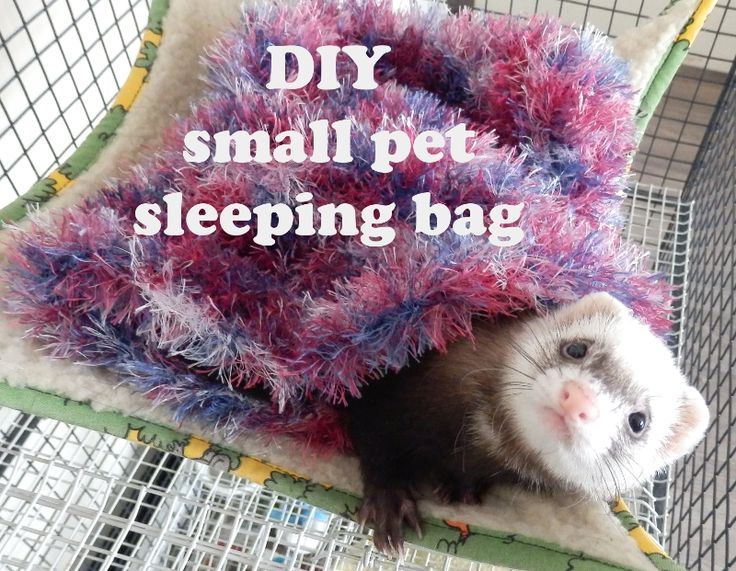 Knit your ferret this easy sleeping bag. My ferret loves to sleep in them!