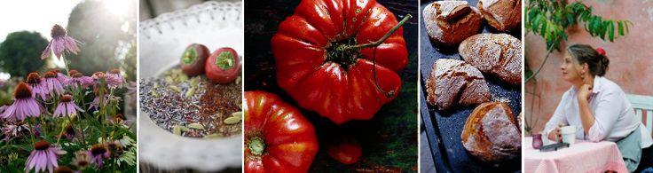 På denne hjemmeside kan man købe alskens underlige, sjældne, økologiske frø til alt fra tomater, krydderurter og blomster. Det er en fantastisk hjemmeside, naturligvis fra Camilla Plum.