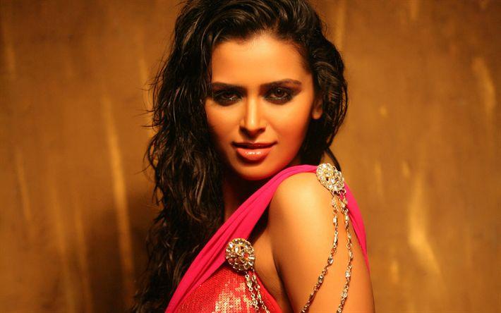 Download wallpapers Meenakshi Dixit, portrait, indian actress, brunette, Bollywood