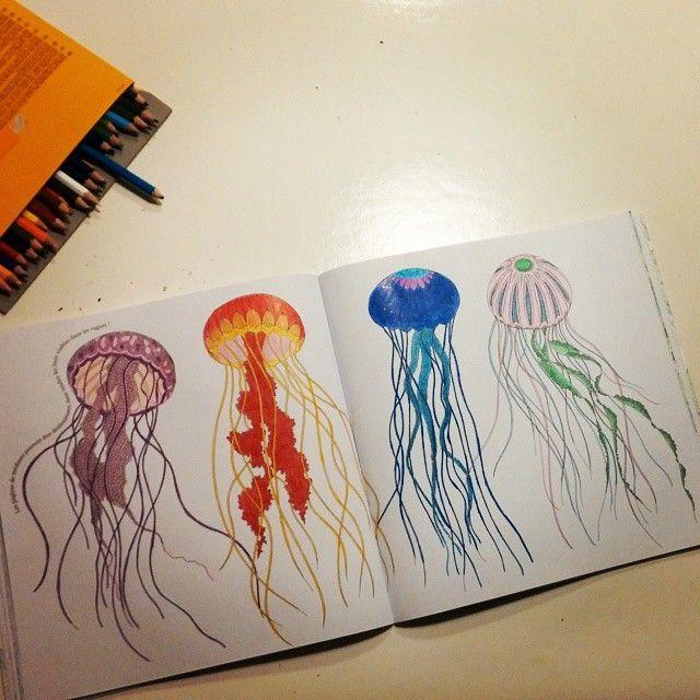 ShareIG Je Men Lasse Plus Coloriage Coloriagepouradultes Crayonsdecouleur Adult ColoringColouringColoring BooksAnimal KingdomVintage