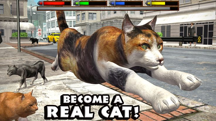 Ultimate Cat Simulator - Download Link http://bit.ly/2jI2T8a