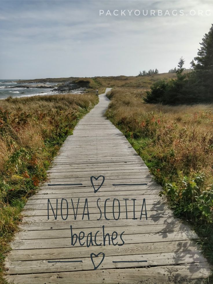 When in doubt, head to the beach. Find out more about fun family activities in Nova Scotia by going to our blog. #canada #novascotia #halifax #hiking #kids #familyfun #hiking #trail #travelingfamily #familytravel #takethekids #maritimes #atlanticcanada