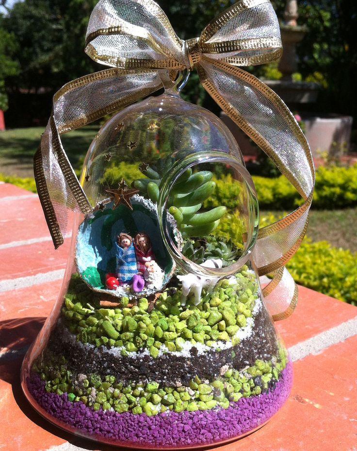 Terrario con suculenta en campana de cristal,decorado en navidad