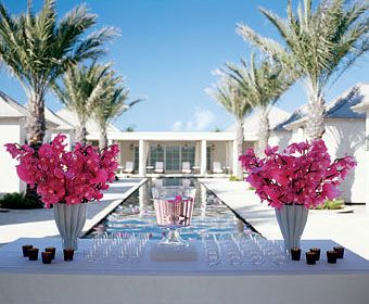 "Brides: Pink Orchid Poolside Cocktail Hour Decor. The cocktail hour, at the resort's spa area, has a serene feel, with orchids floating in the pool and arranged on the bar in ""Waved"" vases, $75 each, from the Conran Shop, conran.com. Tropical punch, by Sebastien Albert for the Palms, is served in a  punch bowl from DK Living, 845/265-6080. Votives, $10 each, from ABC Carpet & Home, abchome.com. Riedel glasses, the Palms' own."