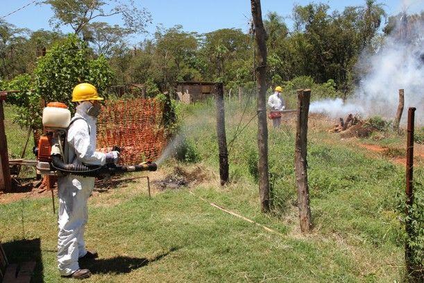En los últimos cuatro años se redujo en 85% la enfermedad del el dengue en Argentina