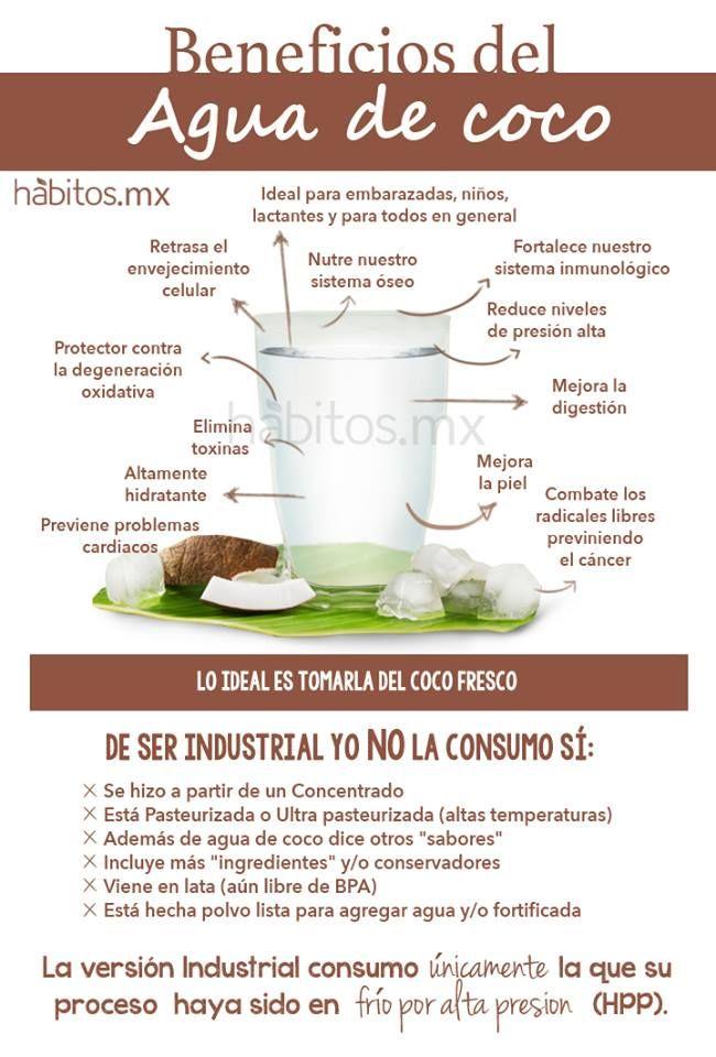 Hábitos Health Coaching | Resultados de la búsqueda agua de sabor