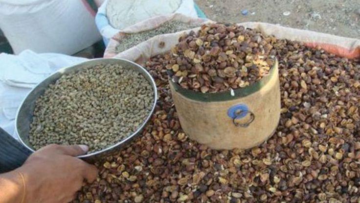 طريقة عمل قشر القهوة للتنحيف Dog Food Recipes Food Animals How To Dry Basil