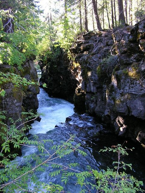 Rogue River Gorge Near Union Creek, Oregon up towards Crater Lake. Union Creek area is one of my favorite places on earth!