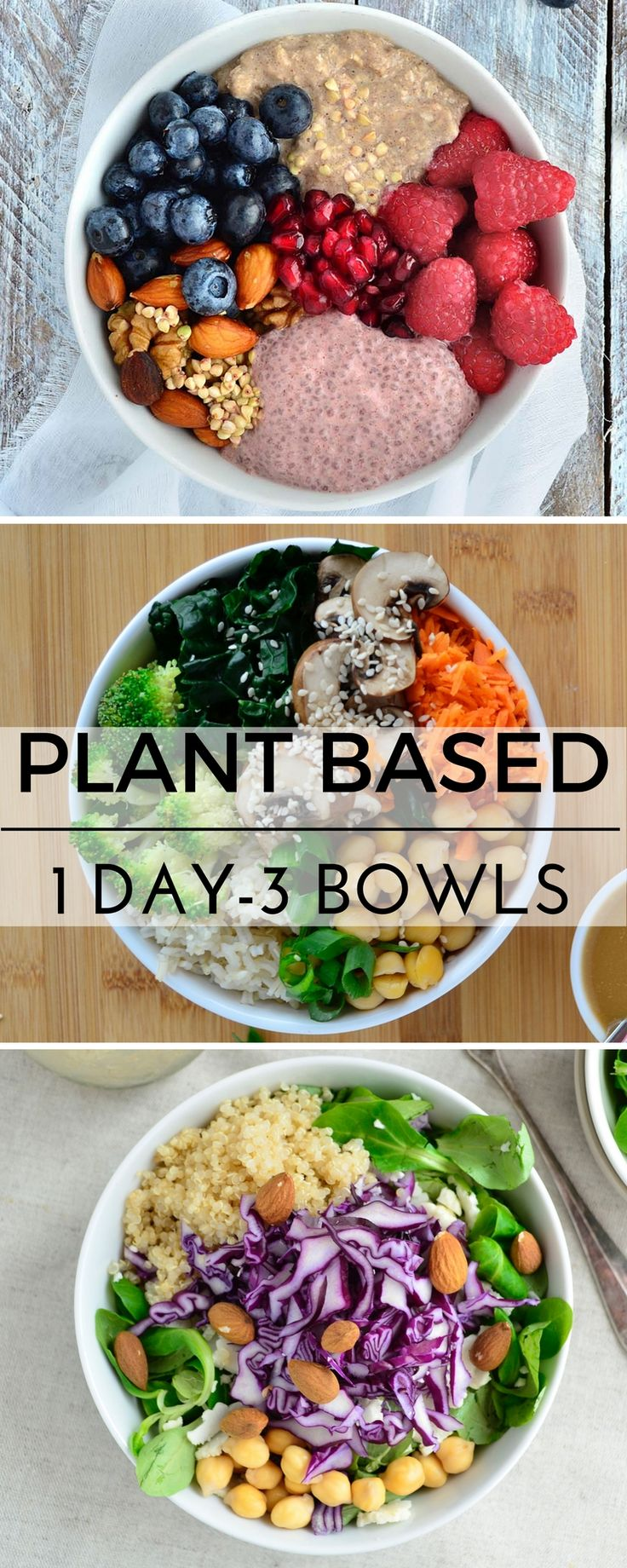 Rise Shine Cook – 1 Day 3 Plant Based Bowls; Breaking Down Plant Based Barriers.Kim Richardson