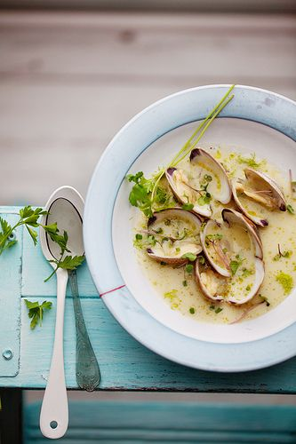 Clams in a light fennel and shallot broth by Canelle et Vanille.