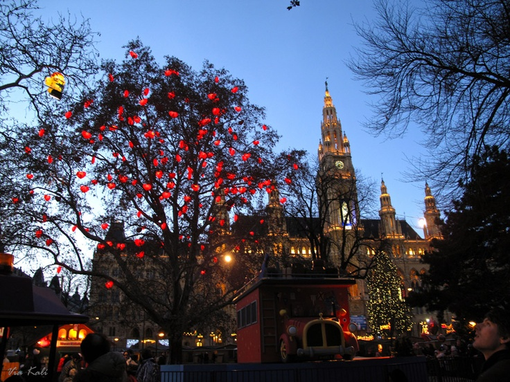 I want to start a Christmas Market in my town! (Christmas Market Vienna)