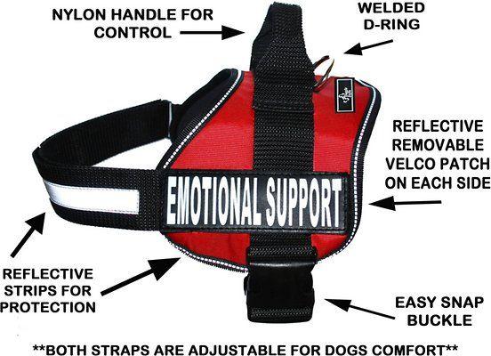 High Fashion Dog Harness Black Designer Dog Harness No Choke