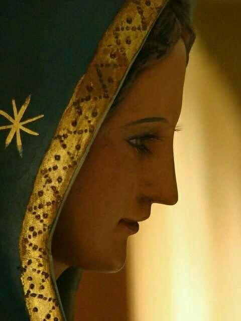 La Virgen de Guadalupe, protectora de los no nacidos.