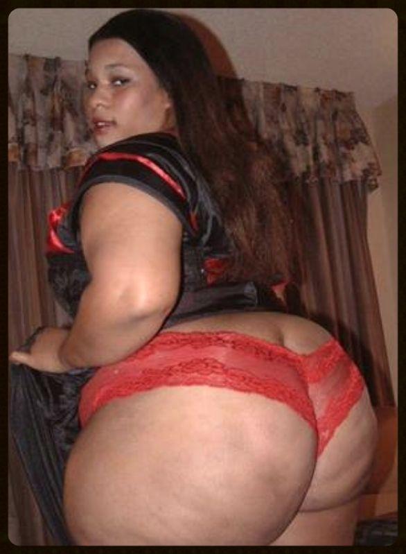 Pinterest bbw big ass