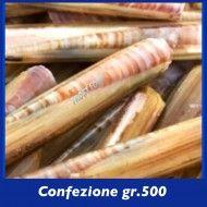 cannolicchi di mare - Negozio surgelati torino