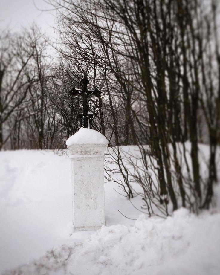 #crosscountryskiing #trip #snow #klubkocestuje #naturelovers #cross Křížek pro maminu do sbírky!⛷❄️