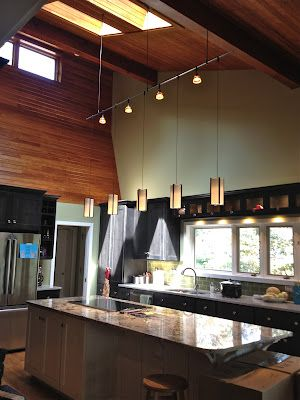 Suspended Track Lighting System. Debra Paessler Designs.......beauty
