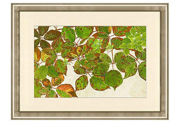 Abstract Botanical Print IV on OneKingsLane.com
