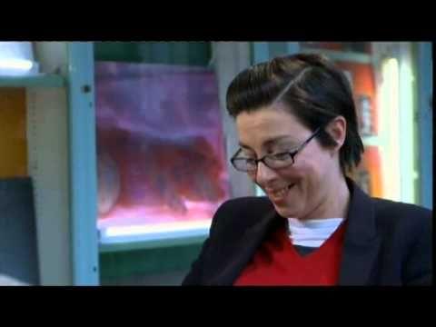 David Sedaris' BBC Fringe interview with Sue Perkins