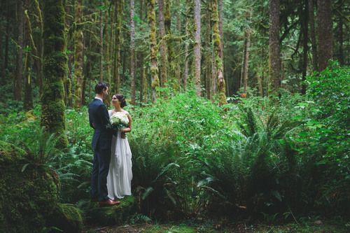 IMG_2229 SUNSHINE COAST BC WEDDING PHOTOGRAPHER WEST COAST WILDERNESS LODGE JENNIFER PICARD PHOTOGRAPHY.jpg