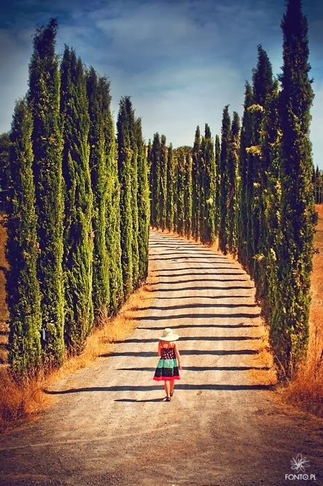 Tuscany, A beautiful way to walk: Tuscany, A beautiful way to walk