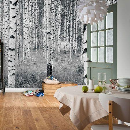 Een natuurlijke sfeer in huis met dit berkenbos #fotobehang.