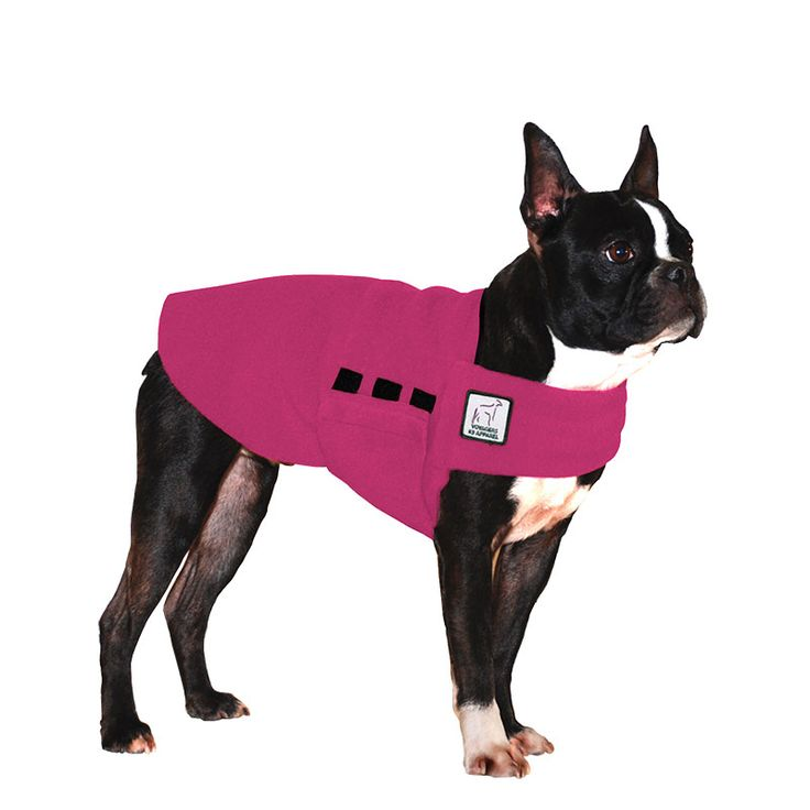 Magenta Pink Boston Terrier Dog Tummy Warmer, great for warmth, anxiety and laying with our dog rain coat. High performance material. Made in the USA.