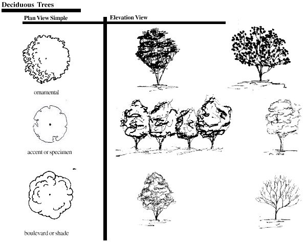 landscape architecture graphic symbols | 2006 Regents of the University of Minnesota. All rights reserved ...