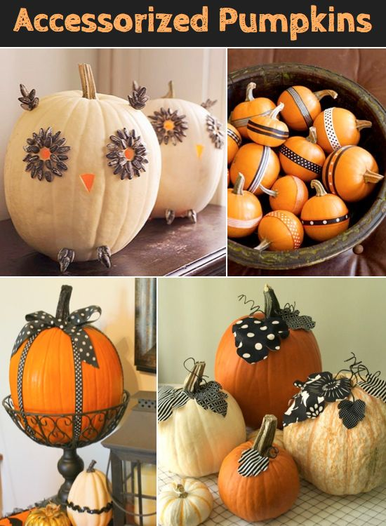 Pumpkin decor ideas without carving bottom left corner is