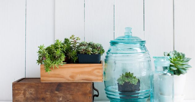 10 simple ways to make your home healthier