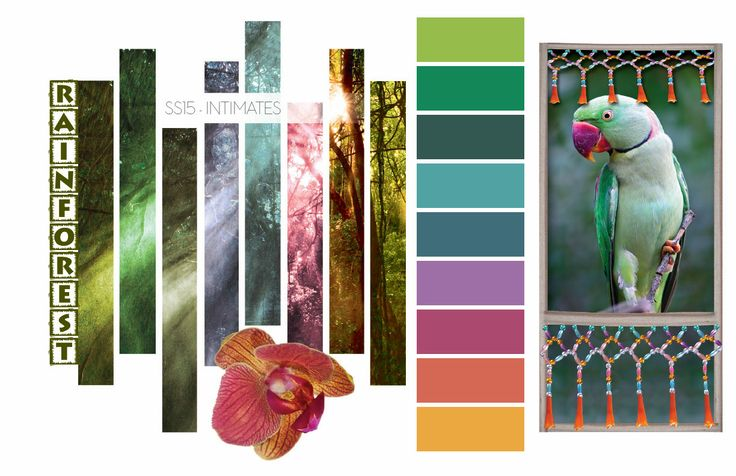 Rainforest, intimates color trends, spring summer 2015 color trend, rainforest color palette-Blog coming soon