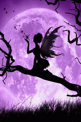 Purple fairy                                                       …                                                                                                                                                     Más