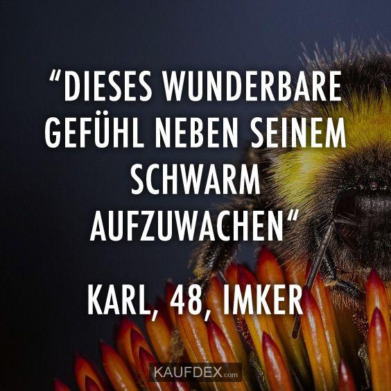 """""""Diese wunderbare Gefühl neben seinem Schwarm aufzuwachen"""" Karl, 48, Imker"""