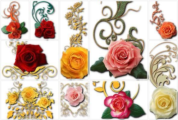 Волшебные розы - профессиональный клипарт с прозрачным фоном для оформления поздравлений в Фотошопе