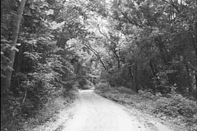 Zombie Road: St. Louis, Missouri. Originally Lawler Ford Road, locals began calling it Zombie Road for a murderer who lived in a shack nearby who was called 'Zombie.' The spirit of a man who was killed by a nearby train, a woman who yells at passersby, and a young boy who fell to his death are said to dominate the road as well as many Native American spirits who used to live there.