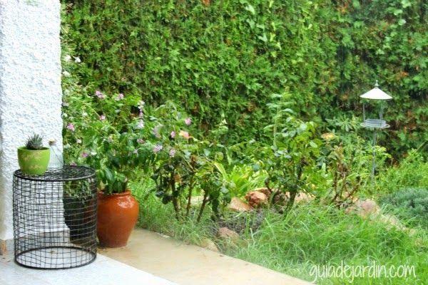 Preciosas imágenes de un jardín en otoño