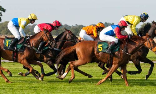 #English_Horse_Racing is one the exciting games for anyone and getting best tips advisor is quite difficult. #Racedayratings give you free race cards, tips, and latest #horse_racing results from races today. Visit us now for better assistance.