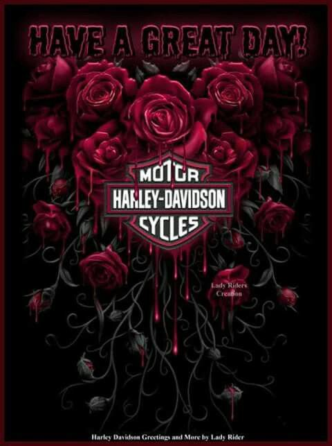 602 Best HARLEY GOOD MORNING Images On Pinterest Buen