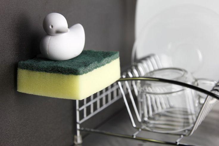 Sponge Duck - Qualy | Abonee