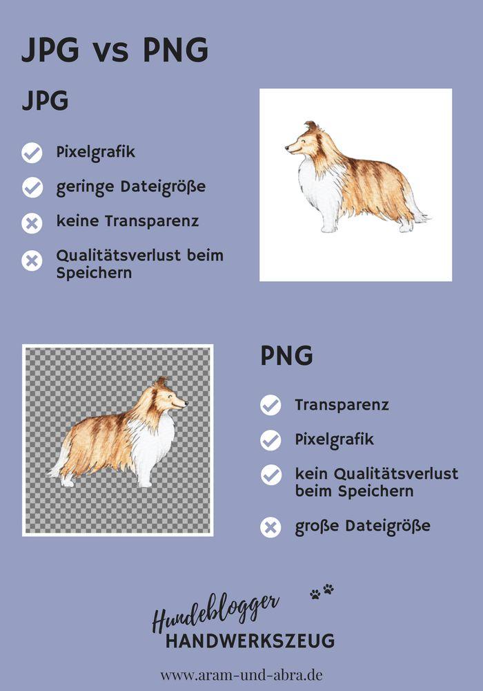 Als Hundeblogger stolpert man über allerlei Fachbegriffe. HTML, SSL, Dateiformate, DSGVO und sponsored Posts? Unsere Liste bringt Licht ins Dunkel, mit Infografiken und einfachen Erklärungen. | Hundeblogger Handwerkszeug – Wissen | Aram und Abra | www.aram-und-abra.de #bloggen
