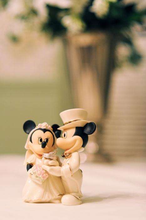 Disney Themed Wedding | Henry + Masci Photography