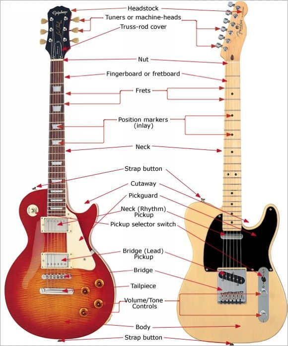 Guitar Anatomy The Parts Of Electric And Acoustic Guitars Guitarless Music Theory Guitar Electric Guitar Playing Guitar