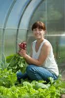 zöldségtermesztés - Google keresés